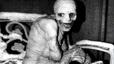 Photo of Das Russische Schlafexperiment [German Creepypasta]