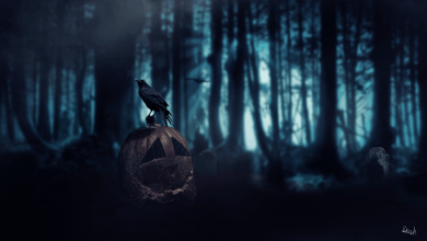 Bild von Halloweens Ende (Part IV)