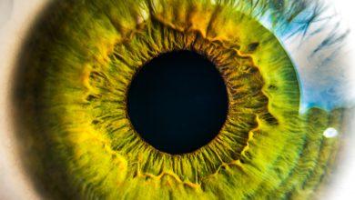 Photo of Die Augen meiner Freundin
