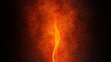 Photo of Dear Flame