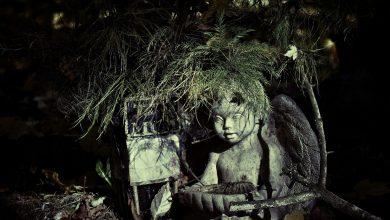 Bild von Totengräber