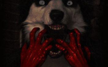 Bild von Was ist der Smile Dog ?- Der Smile Dogexistiert!