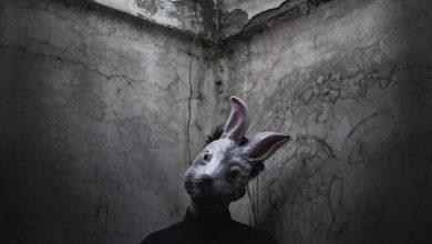 Bild von Rusty Rabbit.jpg – Ich bin aber NICHT verrückt