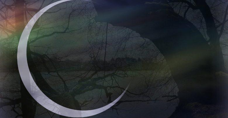 Lichtscheu-Lyrik