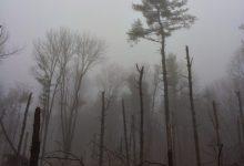 Photo of AETERNAM TENEBRAE  – Die Ewige Dunkelheit!