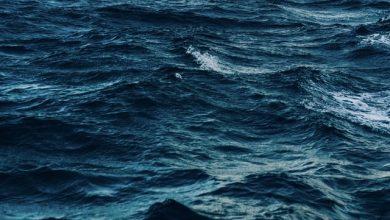 Bild von Der Ozean ist wesentlich tiefer als wir dachten