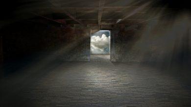 Bild von Eingesperrt im Keller